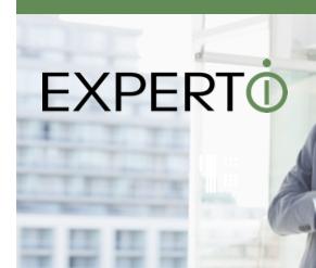 Expert-I